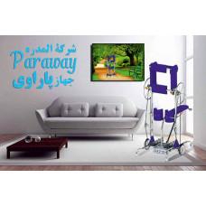 جهازپاراوی  Paraway